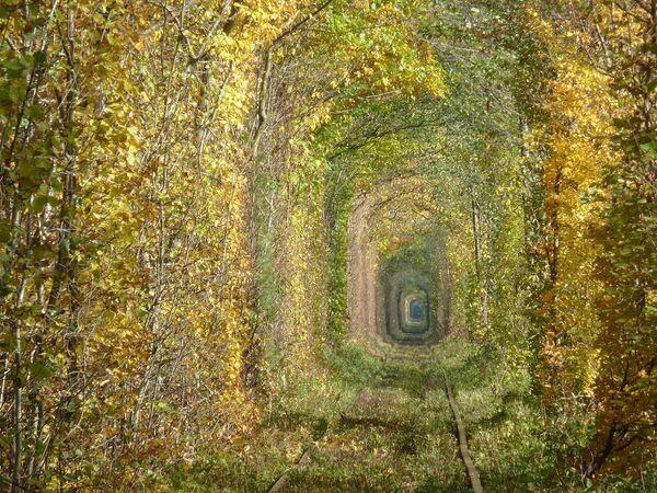 Il tunnel dell'Amore - Sputnik Italia