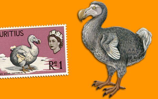 Dodo - Francobollo e illustrazione artistica - Sputnik Italia