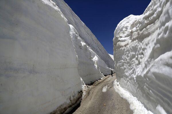 Una strada straordinaria nel nord del Libano. - Sputnik Italia