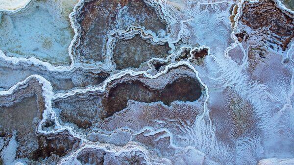 Sorgenti d'acqua calda nel Parco Nazionale di Yellowstone - Sputnik Italia