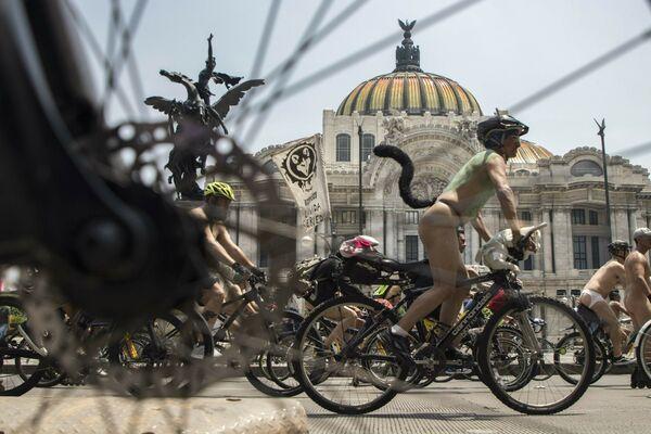 Ciclisti nudi in Messico. - Sputnik Italia