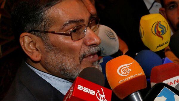 Il segretario del Consiglio di Sicurezza iraniano Ali Shamkhani  - Sputnik Italia