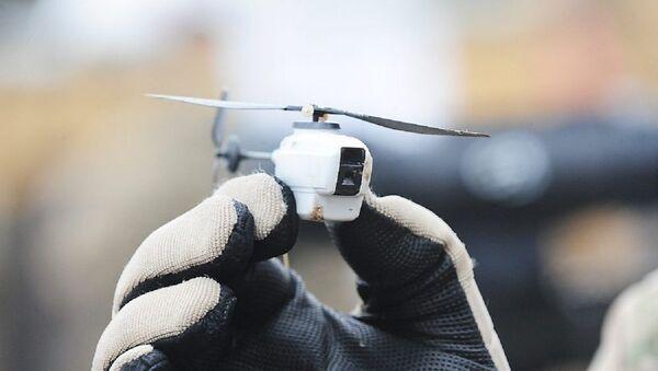 Droni Vespa nera - Sputnik Italia