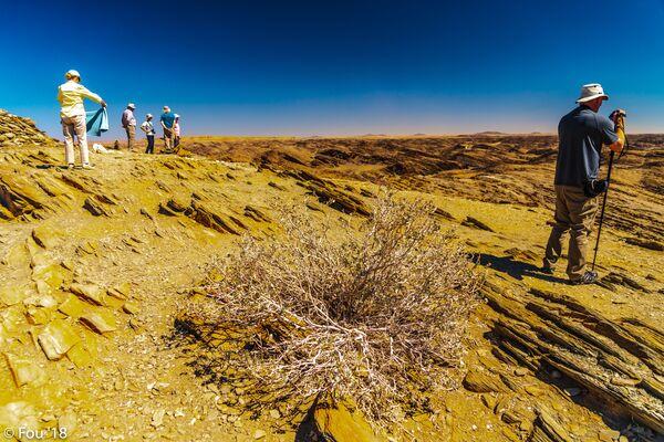 Il Carpcliff orientale in Namibia. - Sputnik Italia