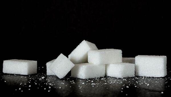 Zucchero - Sputnik Italia