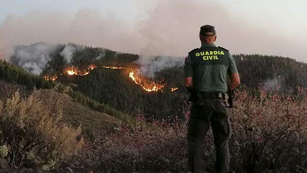 Incendi all'isola Gran Canaria - Sputnik Italia