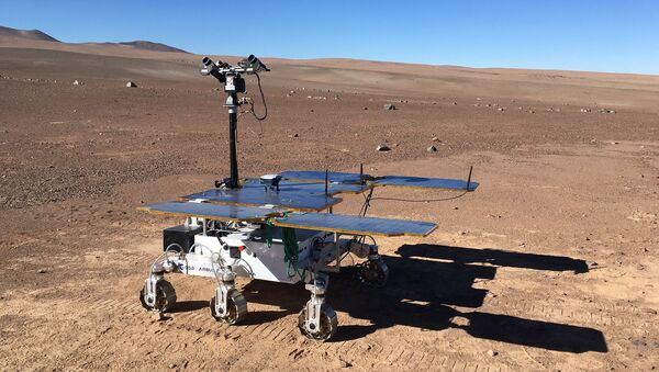 Un rover su Marte - Sputnik Italia