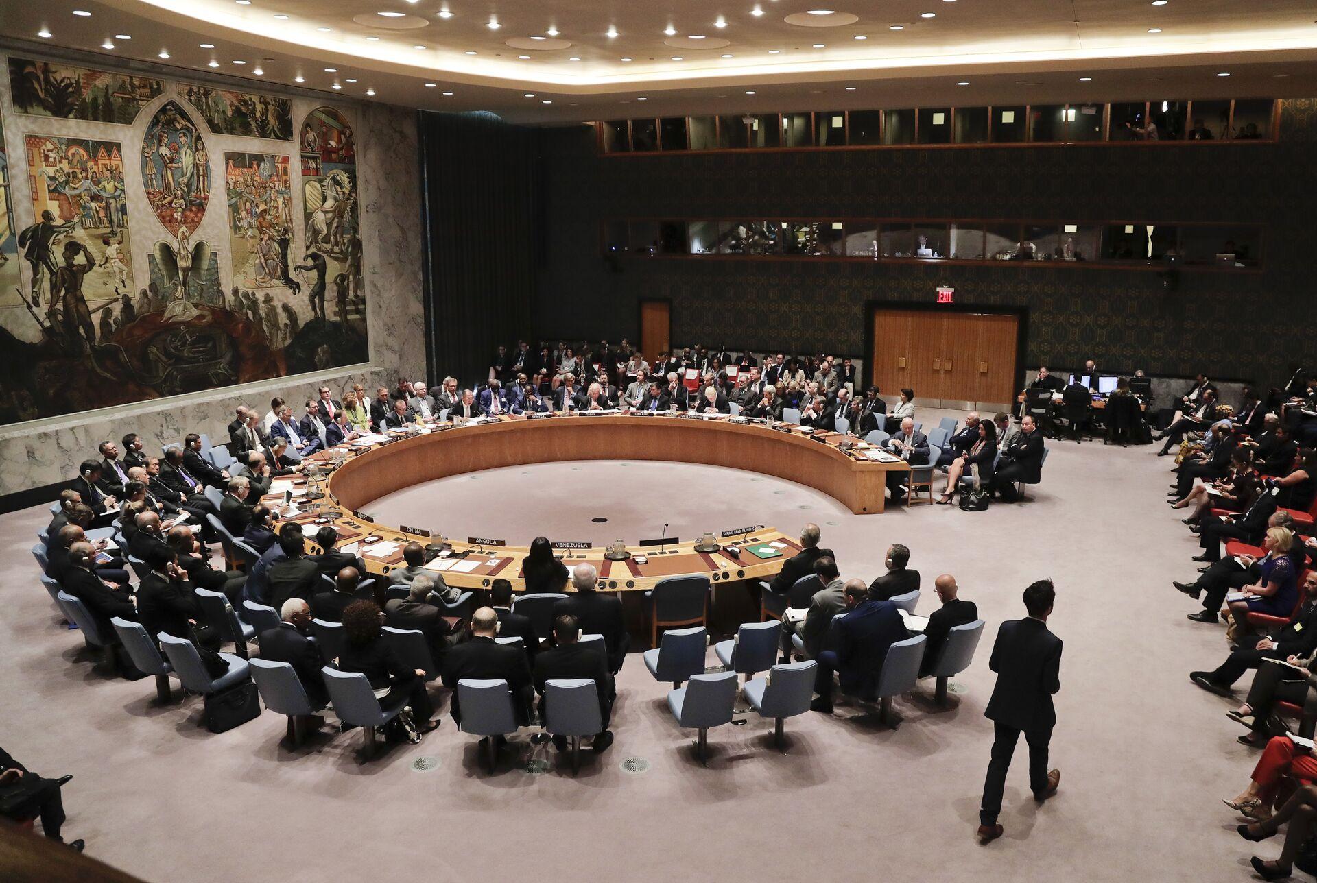 Consiglio di Sicurezza dell'Onu - Sputnik Italia, 1920, 18.05.2021