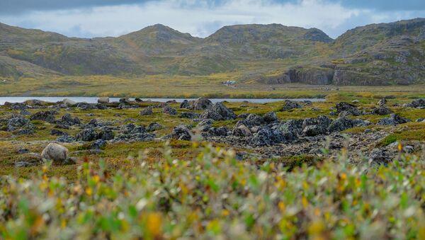 La penisola di Kola, nella regione di Murmansk - Sputnik Italia