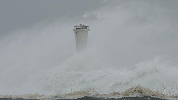 Il tifone Hagibis - Sputnik Italia