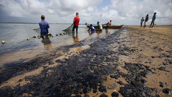 Pulizia delle spiagge chiazzate di petrolio in Brasile - Sputnik Italia