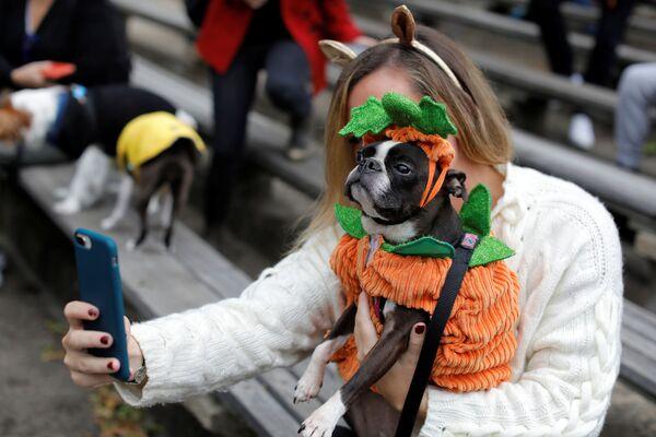 Lindzi Rebernik scatta un selfie con il suo cane, Boston Terrier, all'annuale Halloween Dog Parade a New York, il 20 ottobre 2019. - Sputnik Italia