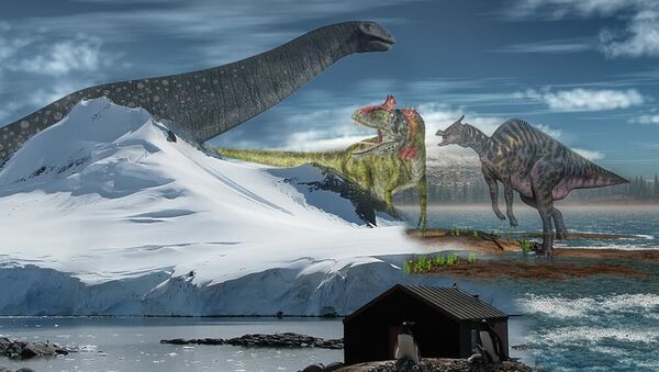 Illustrazione: il passato dell'Antartide - Sputnik Italia