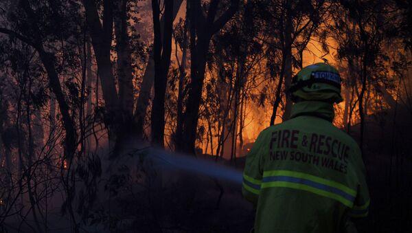 Pompieri spengono incendio in Australia - Sputnik Italia