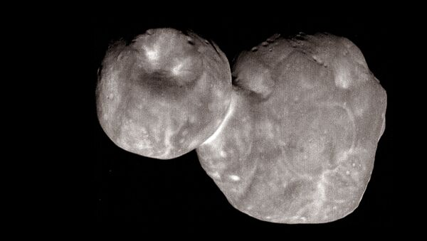 Asteroide Arrokoth (Ultima Thule) - Sputnik Italia