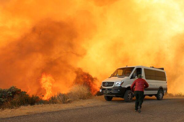 Incendi boschivi in California. - Sputnik Italia