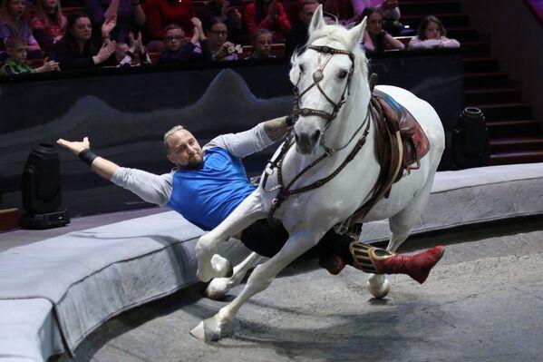 La struttura che ospita le performance degli artisti circensi nel Gran Circo Statale di Mosca è il più grande padiglione da circo del mondo - Sputnik Italia