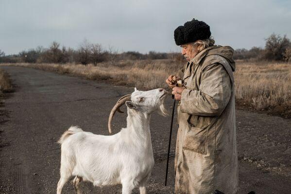 Un uomo nutre una capra nel villaggio di Donetsky - Sputnik Italia