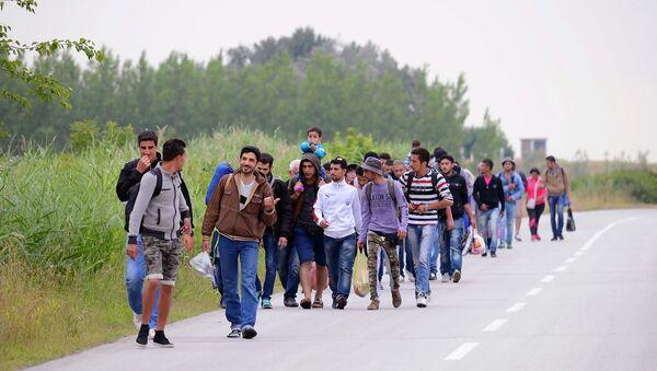 Migranti siriani in marcia verso confine serbo-ungherese - Sputnik Italia
