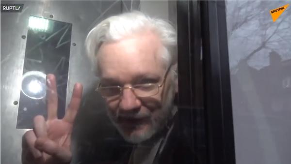 Le immagini esclusive di Assange da una camionetta della polizia dopo udienza a Londra, il 13 gennaio 2020 - Sputnik Italia
