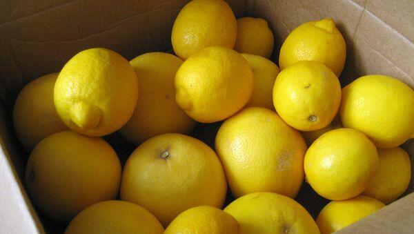 Limoni - Sputnik Italia