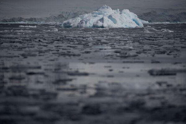 Fournier Bay, baia nella Regione antartica - Sputnik Italia