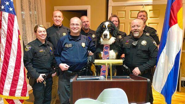 Parker the Snow Dog ha prestato giuramento ufficiale come sindaco onorario di Visit Georgetown, in Colorado, il 18 febbraio ~  - Sputnik Italia