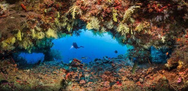 Lo scatto Fotteyo overhangs dal fotografo russo Oleg Gaponyuk. La foto è stata scattata nei pressi delle Maldive. - Sputnik Italia