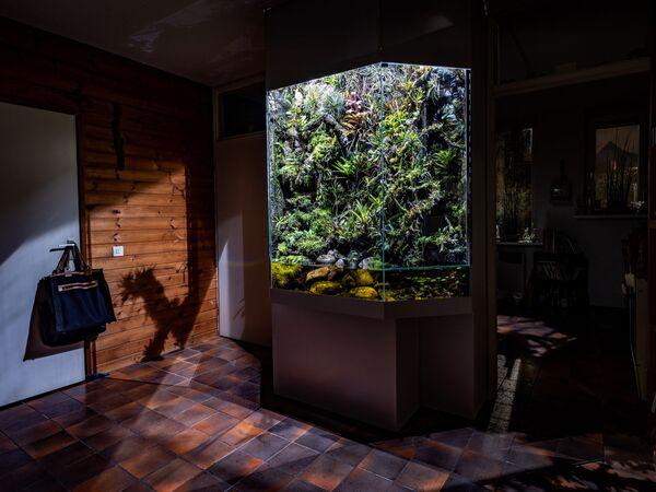 Il fotografo olandese Jorrit 't Hoen e la sua serie Parallel Universe - Sputnik Italia