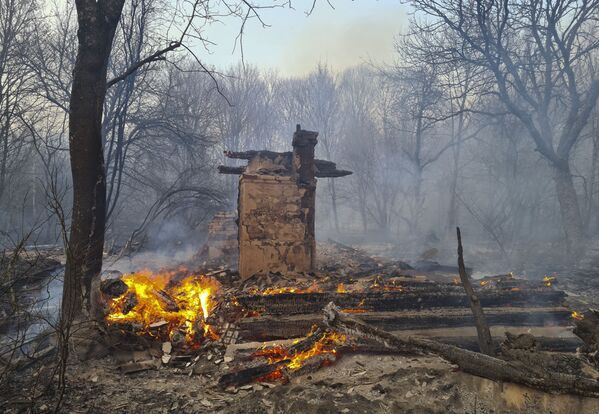 Una casa disabitata ha preso fuoco durante l'incendio boschivo nella zona di alienazione di Chernobyl - Sputnik Italia