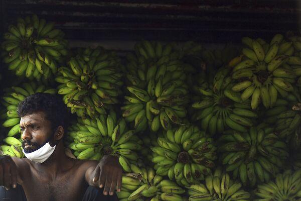 Un lavoratore che indossa una maschera facciale riposa in un mercato di ortaggi durante un blocco nazionale imposto come misura preventiva contro la diffusione del nuovo coronavirus COVID-19 a Colombo il 4 aprile 2020 - Sputnik Italia