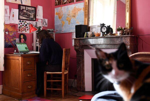 Una studentessa francese e il suo gatto - Sputnik Italia