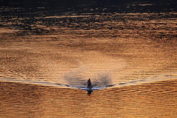 Un peschereccio sul fiume Potomac a Washington al tramonto, USA - Sputnik Italia
