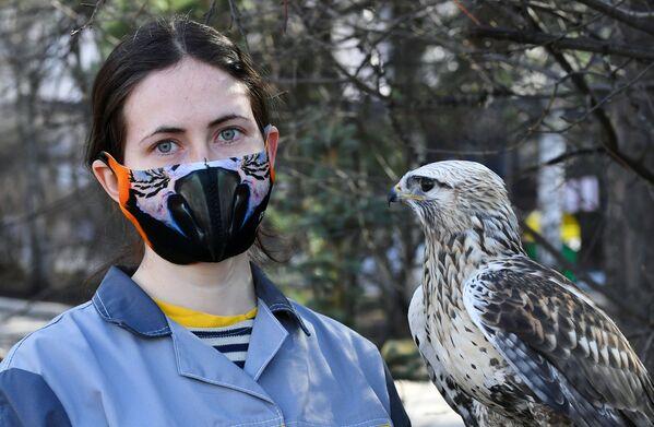 Ornitologa del parco di flora e fauna di Royev Ruchey Daria Chereshkevich con una poiana di nome Stesha a Krasnoyarsk - Sputnik Italia