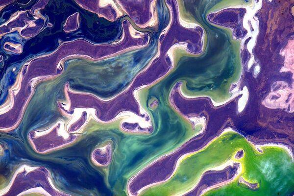 Lo scatto del lago Tengiz in Kazakistan fatto dall'astronauta americano Scott Kelly dalla Stazione spaziale internazionale. - Sputnik Italia