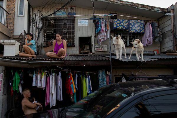 Ragazze passeggiano con i loro cani sul tetto della loro casa mentre il governo filippino impone la quarantena domestica per contenere l'epidemia di coronavirus (COVID-19) a Metro Manila, Filippine, il 21 aprile 2020 - Sputnik Italia