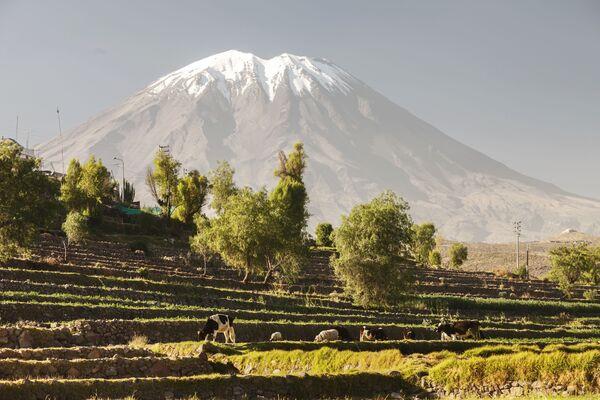 """El Misti, noto anche come """"Guagua-Putina"""" è uno stratovulcano situato nel Perù meridionale - Sputnik Italia"""