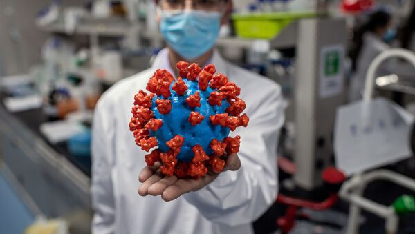 In this picture taken on April 29, 2020, an engineer shows a plastic model of the COVID-19 coronavirus at the Quality Control Laboratory at the Sinovac Biotech facilities in Beijing. - Sinovac Biotech, which is conducting one of the four clinical trials that have been authorised in China, has claimed great progress in its research and promising results among monkeys. - Sputnik Italia