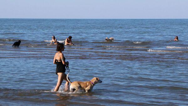 Una donna con cane al mare in Italia - Sputnik Italia